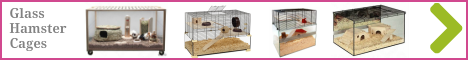 Glass hamster cages for sale